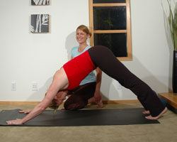 Anne helps a client perfect dog down in yoga