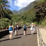 Maui 2012 Recap Iao Needle, Botanical Garden and Mama's