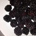 Fresh Blackberry Sauce