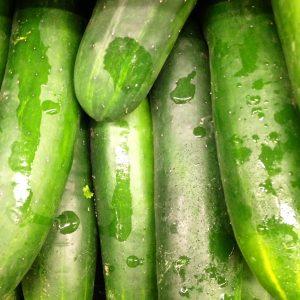 cucumbers 8.14
