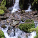 Pup Creek Falls Hike Sunday August 31st, 2014