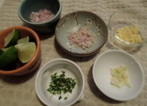 watermelon soup mise en place 7.16